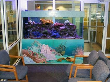 Chesterfield Fish Tank Services